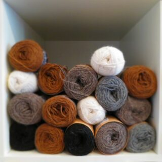 TEA4ply (Medium)